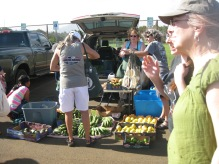 farmer's market in Kapa'a