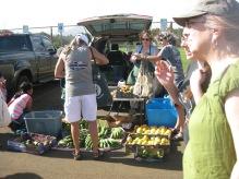 farmer's market in Kapa'a
